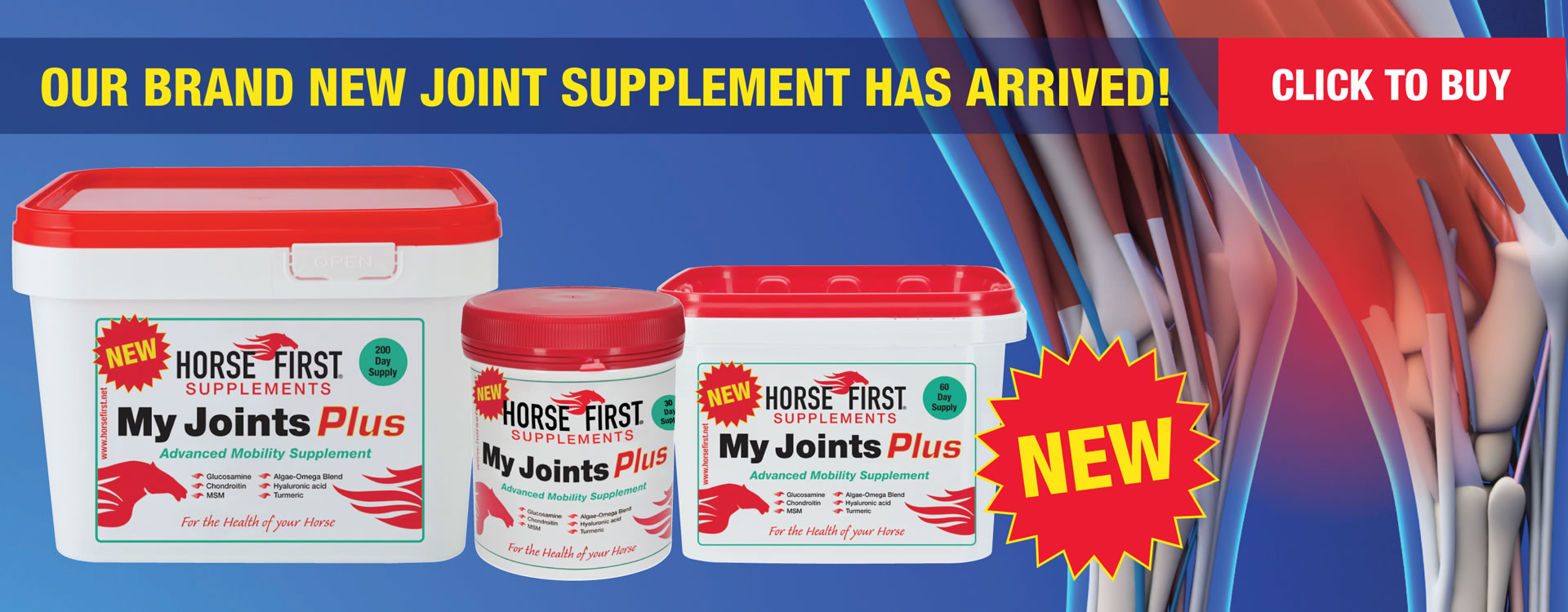 My Joints Plus - Buy Now!